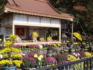 二本松の菊人形.JPG